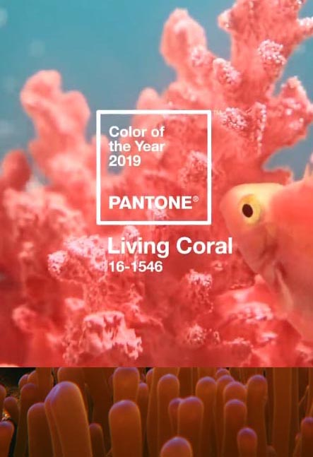 Living Coral AD 2019 – kolor koloru koralowego